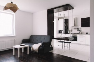 Apartment 99 Designed for a Young Couple
