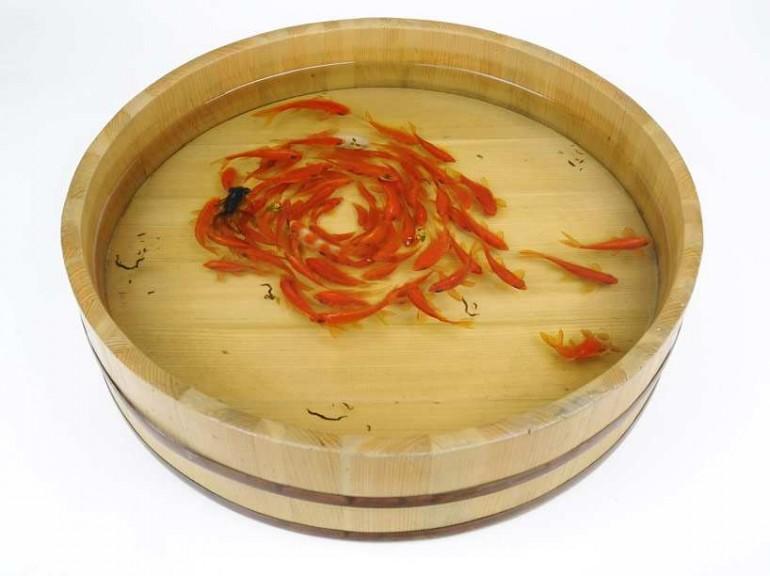 3D Goldfish Paintings by Riusuke Fukahori | 2 Illustration Mag