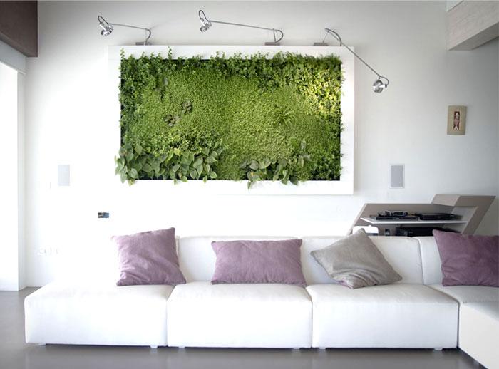 Green Vegetable Pictures By Sundar Italia – InteriorZine