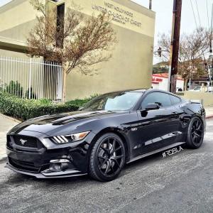 2015 Mustang 5.0