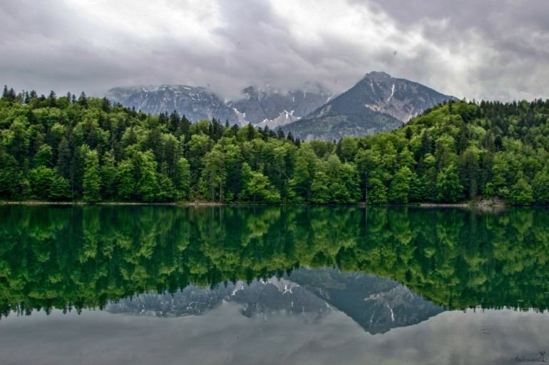 Alatsee (Allgäu, my one true love)