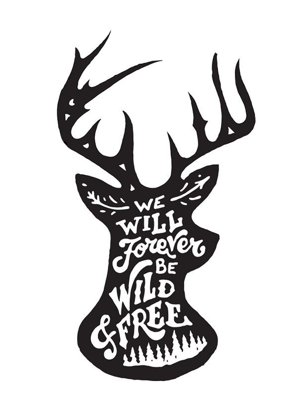 We Will Forever Be Wild and Free