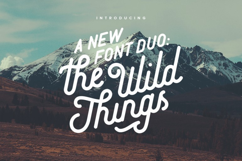 A vintage handcrafted font duo that includes a beautiful cursive script with lots of alternates  ...