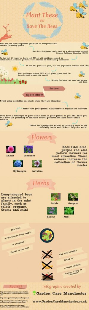 Save the bees for better life and healthier planet . Created by Garden Care Manchester