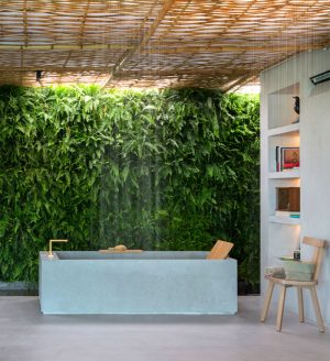 Best Bathroom Plants – InteriorZine.com