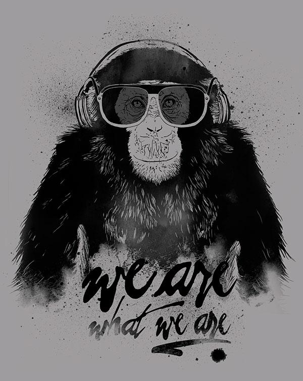 Raiz – t-shirt design