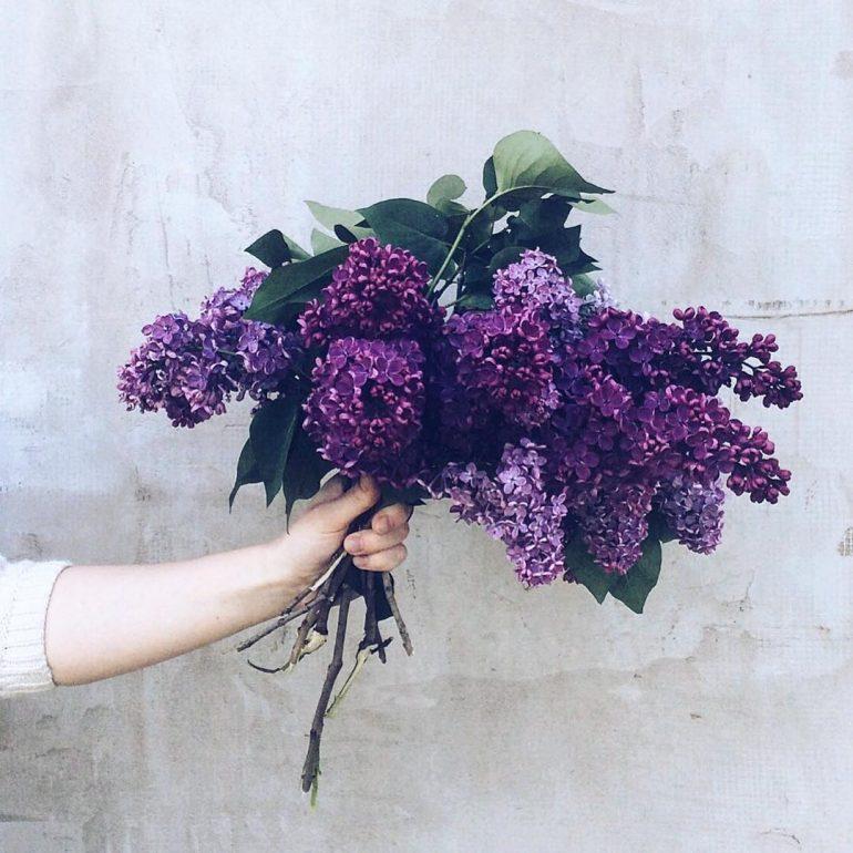 fragrant May ?