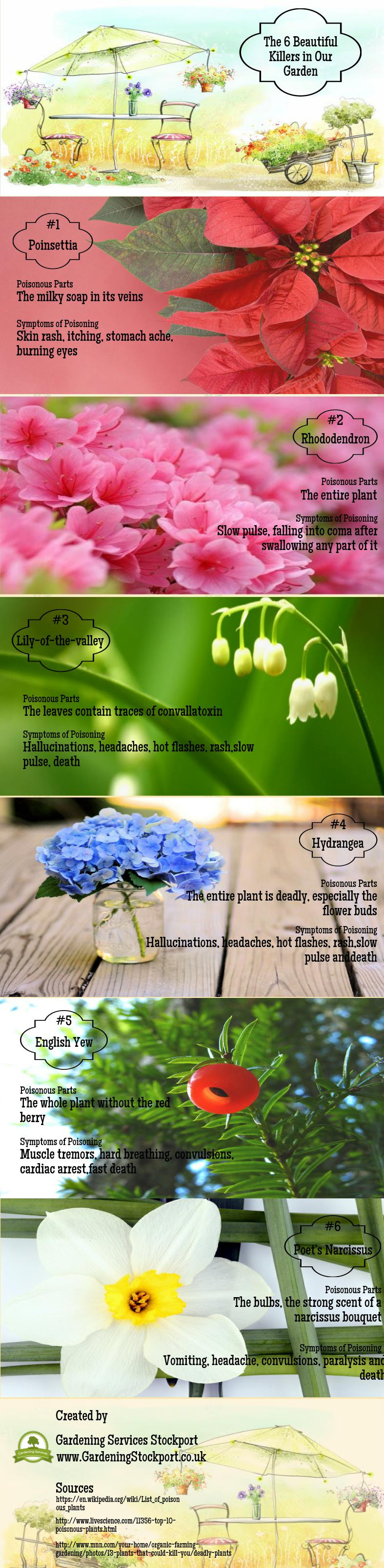 Avoid to plan these flowers, they are really dangerous if you are sensitive. Created by Gardenin ...