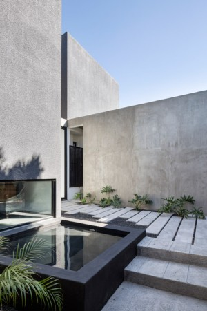 House in Mexico by T38 Studio contains a private courtyard garden