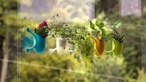 Livi planter for vertical surface