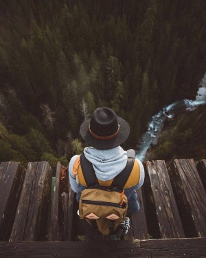 Taking in the view – The Vance Creek Bridge