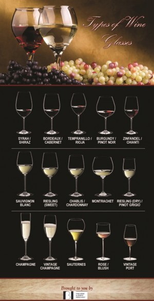 So many types of wine, so many glasses. Which is the correct one? BI Wine knows the best