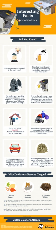 Interesting Facts About Gutter Cleaning