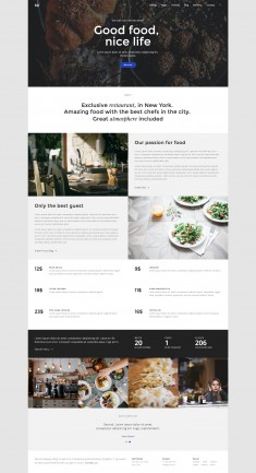 Dap is a fully responsive HTML5 & CSS3 template designed with a creative and clean design.   ...