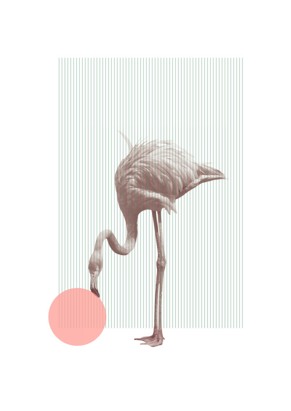 A Poster a Day by Alex Proba