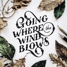 """Going where the wind blows"" by Mark van Leeuwen"