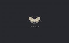 Apollo | Brand Concept