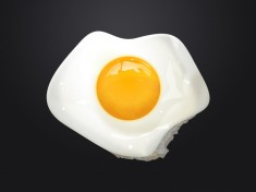 Free Fried Egg Illustration PSD