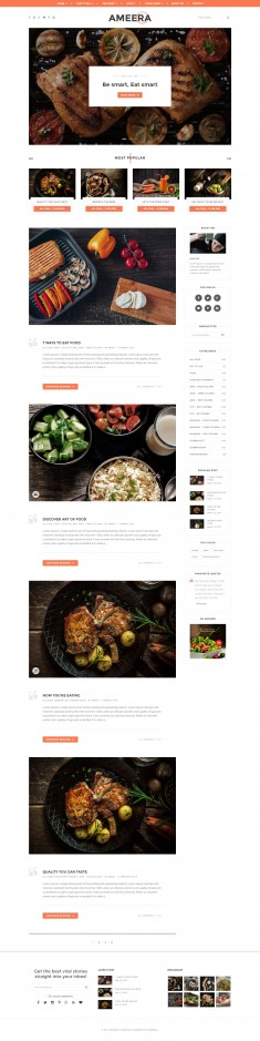 Paperio – Responsive and Multipurpose WordPress Blog Theme – Ameera