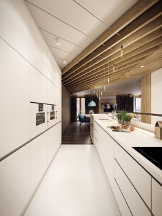 Modern kitchen – Modern apartment n°1 – img01