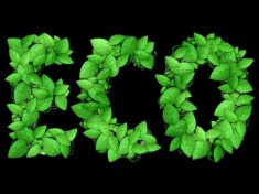 Leafy Text Effect Photoshop