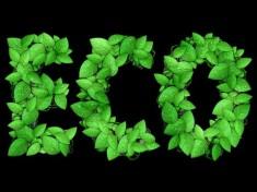 Leafy Text Effect Photoshop