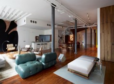 Chelsea Loft Apartment / Omas:Works and Jarlath Mellette