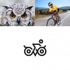 Owl Cycle by Shibu PG