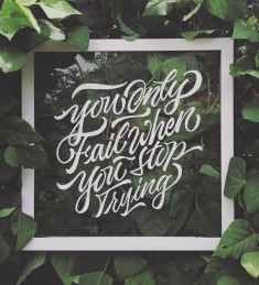 You Only Fail When You Stop Trying