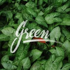 I like green :>