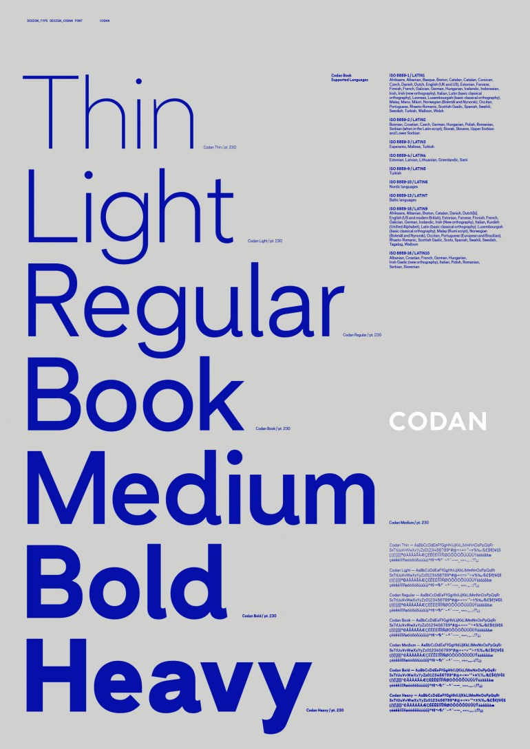 Custom Type Development – Codan Insurance, Denmark