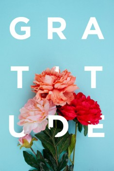 Gratitude by Khuong Pham