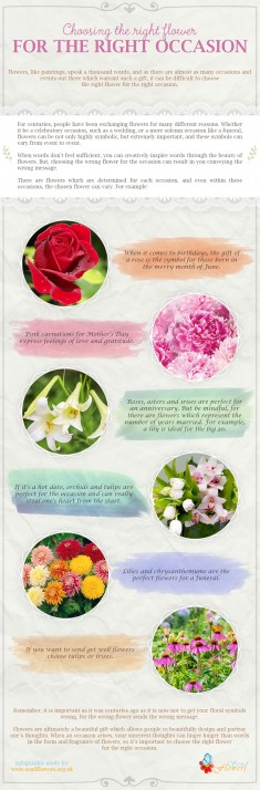 Choosing the Right Flower For the Right Occasion