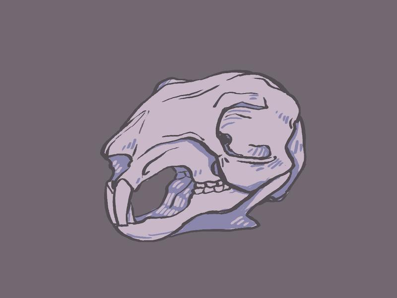 Spooky Squirrel Skull by Katya Austin