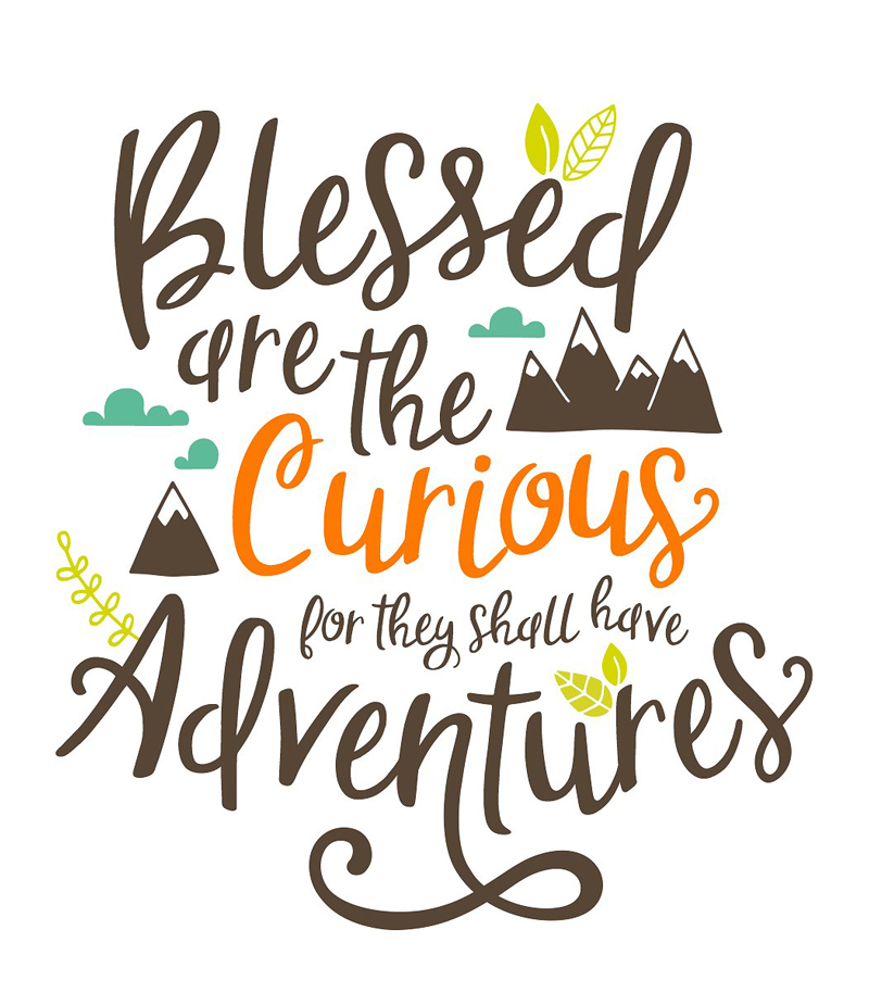 Blessed Are the Curious for They Shall Have Adventures Quote by L. Drachman