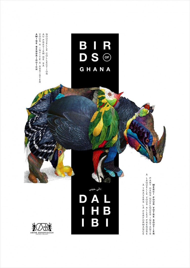 BIRDS OF GHANA // DALI HBIBI by Fabrice Vrigny