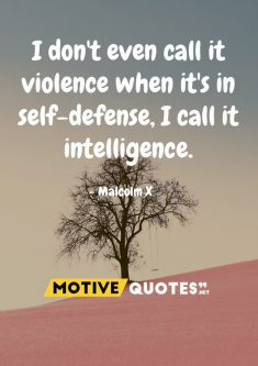 I don't even call it violence when it's in self-defense, I call it intelligence.
