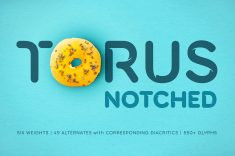 Sans Serif Fonts ~ Torus Notched