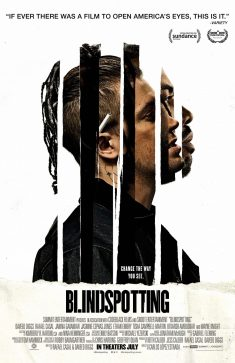 BLINDSPOTTING MOVIE Poster