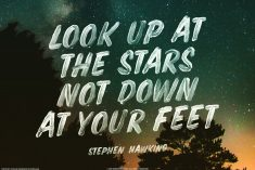 Look up at The Stars Not Down at Your Feet – Stephen Hawking