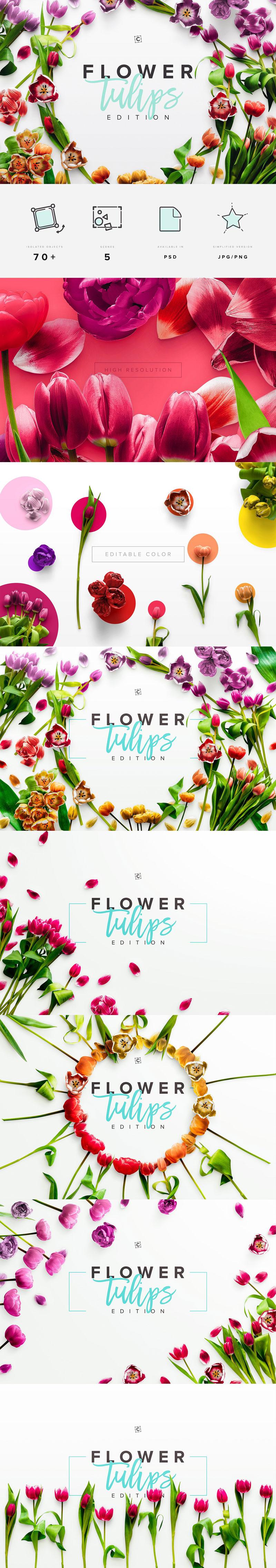 Flower Tulips Edition – Custom Scene