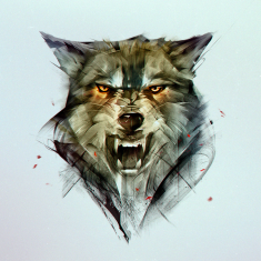 wolf by KHIUS