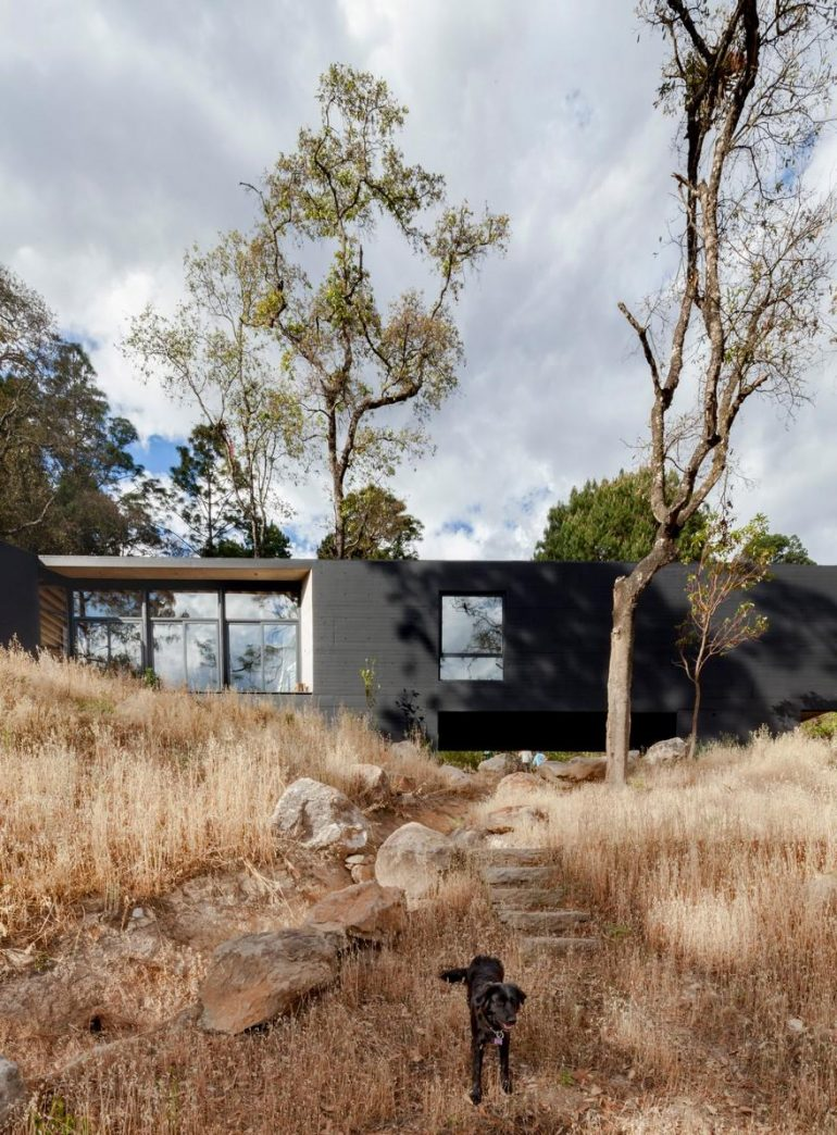 Cadaval & Solà-Morales Designs a Y-Shaped House in the Deep Forests of Mexico