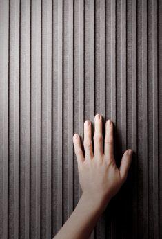 Fiber Cement Facade Panel Linea | EQUITONE