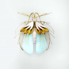 Spring Bugs Series