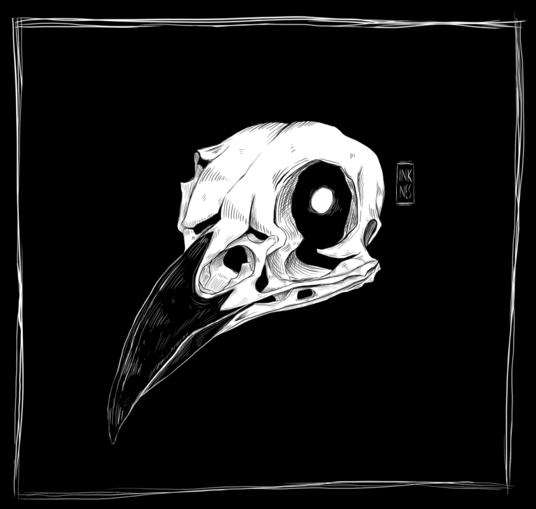 Crow skull by Inknes