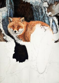 Red Fox – Fire and Frost WIP by BeckyKidus